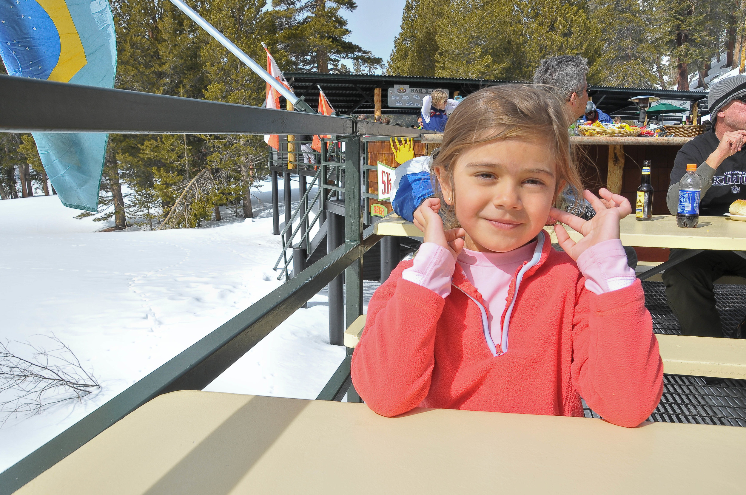 Sunny Day Skiing.jpg