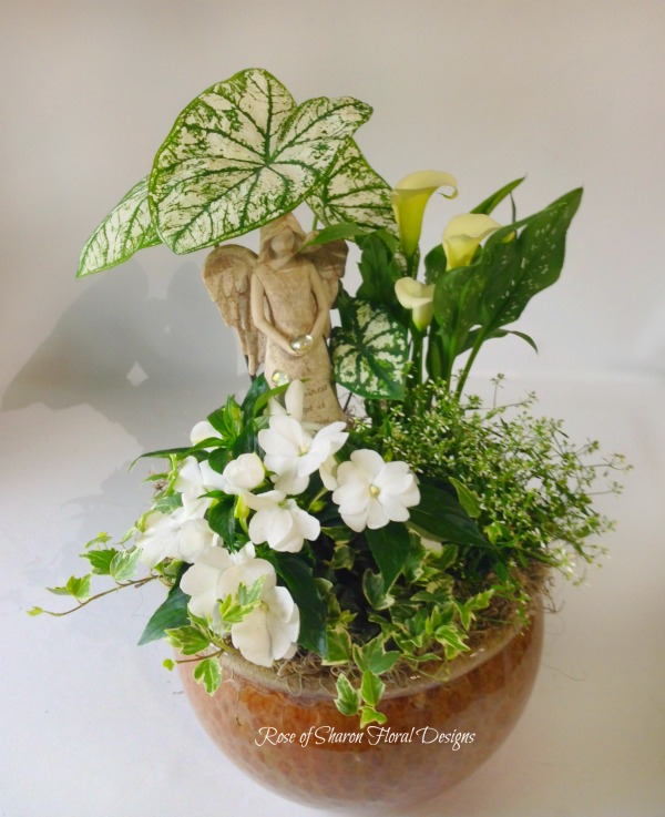 Mixed Planter, Rose of Sharon Floral Designs
