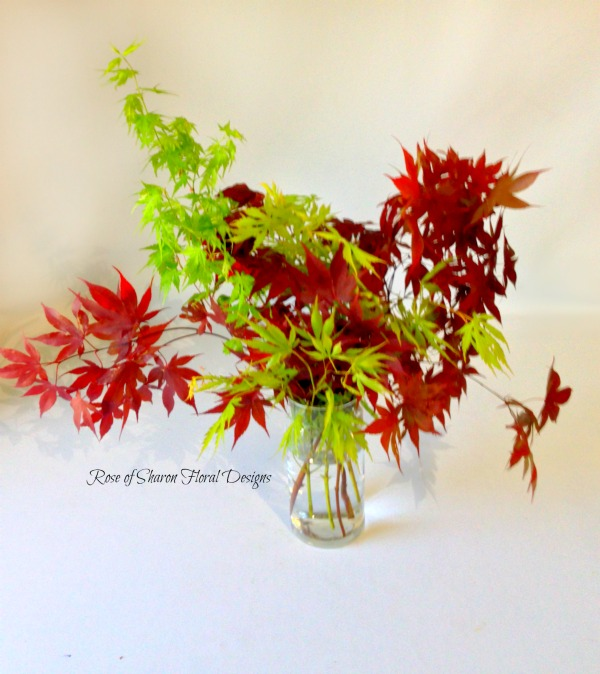 Leaf Arrangement, Rose of Sharon Floral Designs