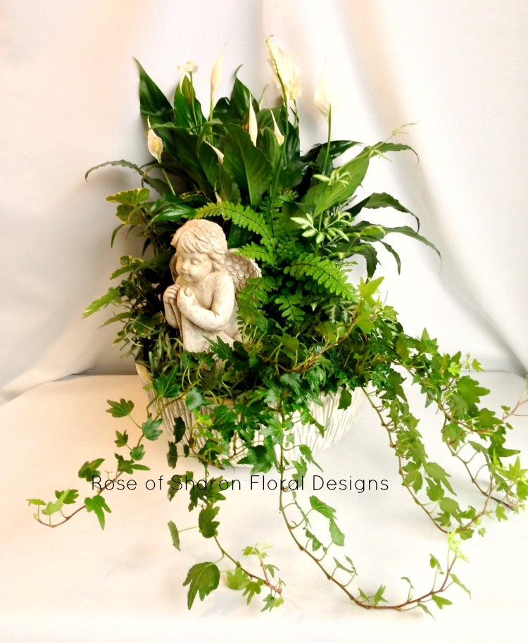 Mixed Planter with Angel Accent, Rose of Sharon Floral Designs