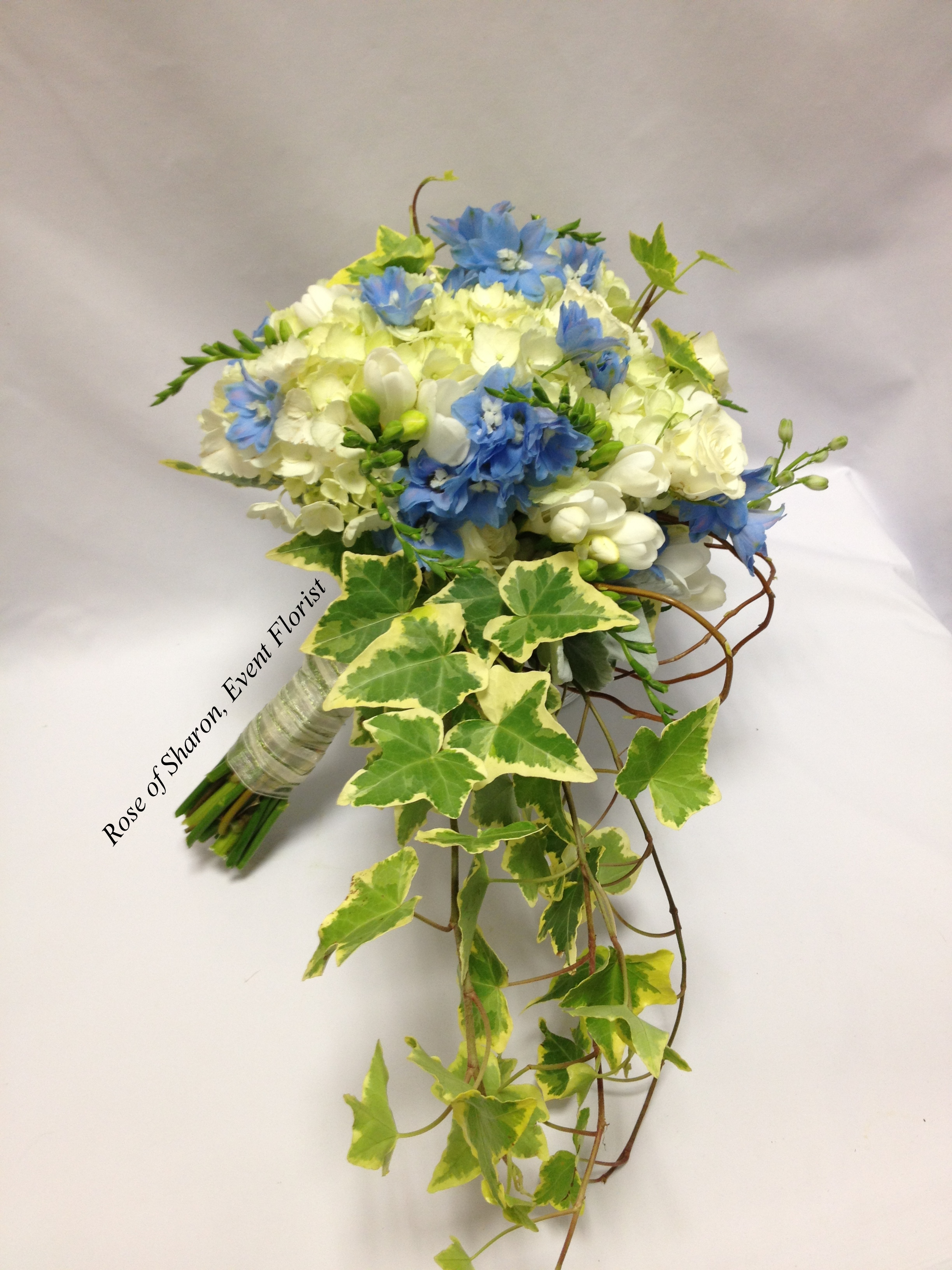 Blue and Cream Cascading Bouquet with Hydrangeas, Delphinium and Ivy. Rose of Sharon Floral Designs