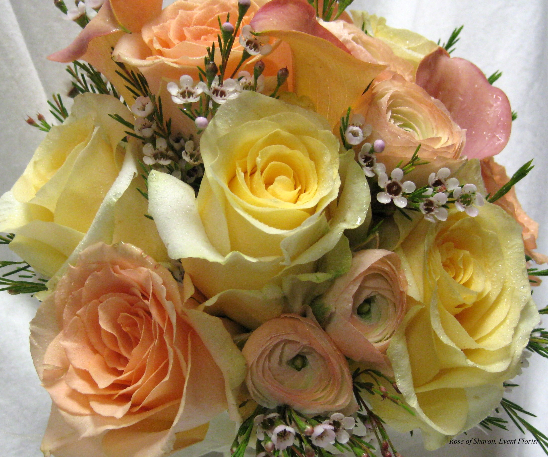 Rose and Wax Flower Bouquet, Rose of Sharon Floral Designs