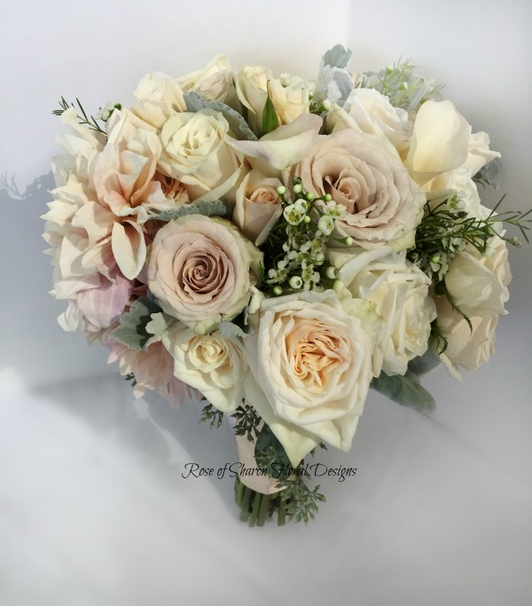 Blush hand-tied garden bouquet with dahlias, garden roses, dusty miller and waxflower. Rose of Sharon Floral Designs.