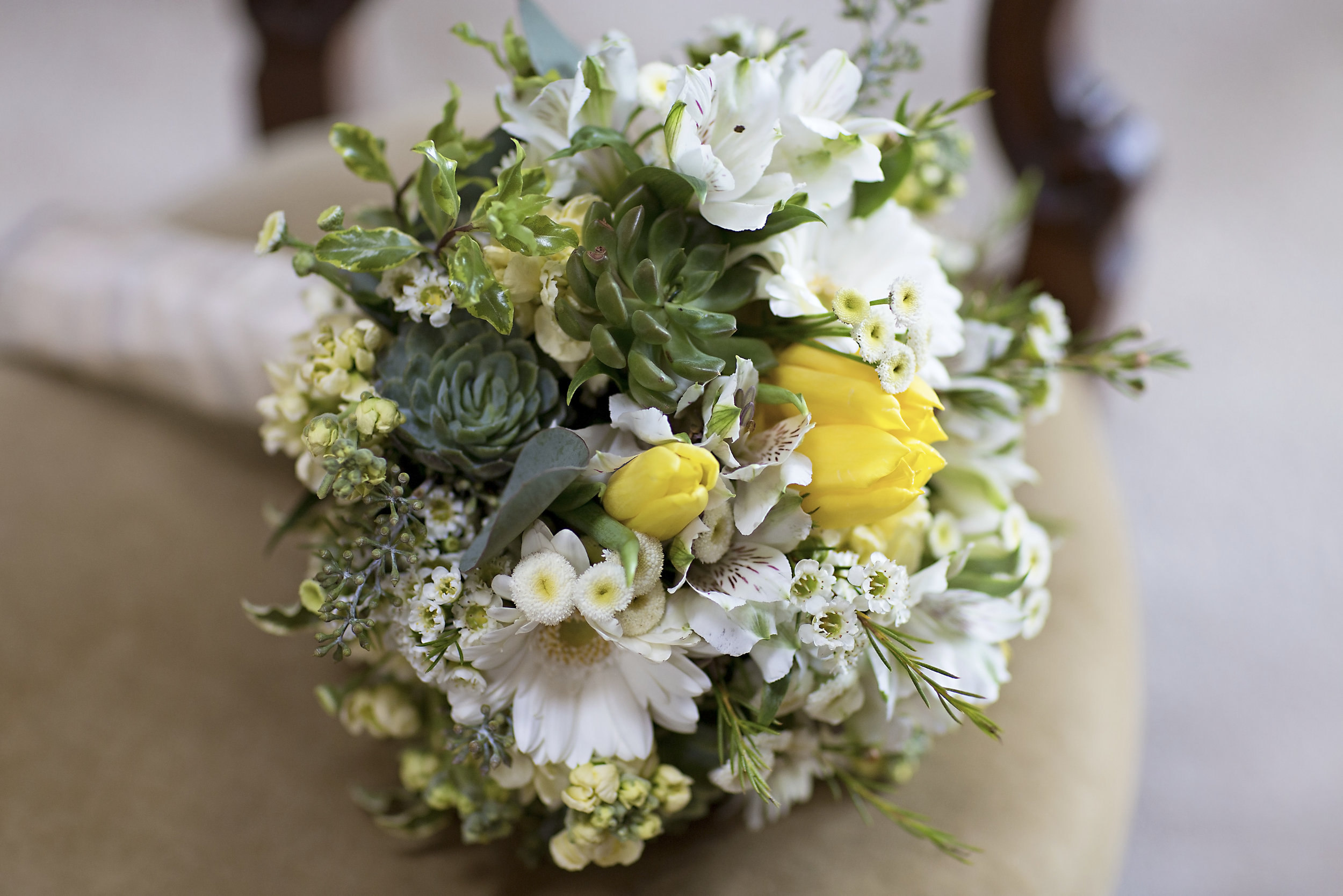 Succulent & gerbera daisy bouquet with yellow tulips, billy balls & eucalyptus. Rose of Sharon Floral Designs