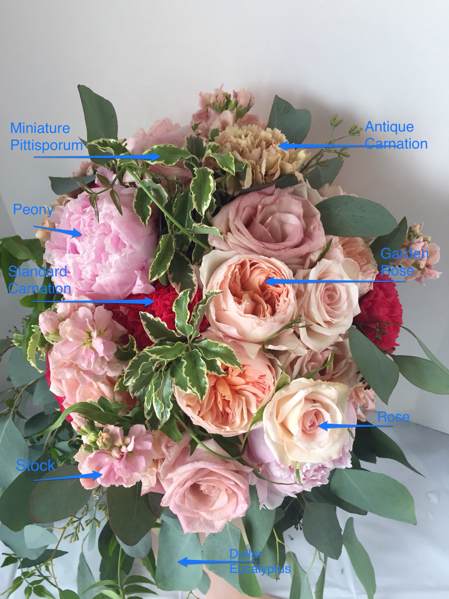Wednesday What S In It Rose Of Sharon Floral Design Studio