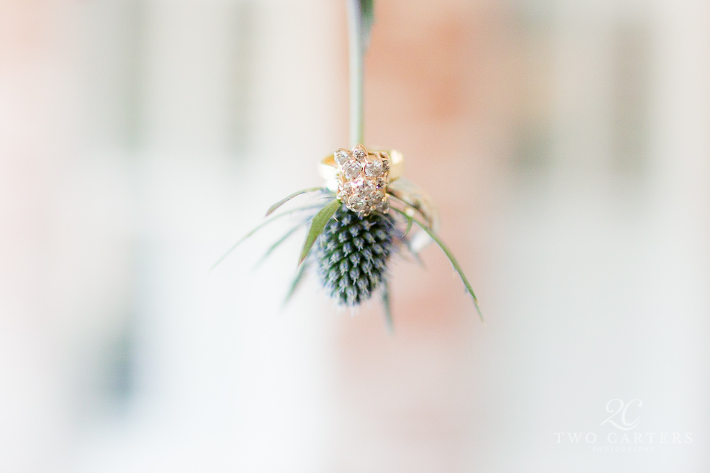 10. Eryngium + rings. Two Carters Photography. Rose of Sharon Floral Designs..jpg