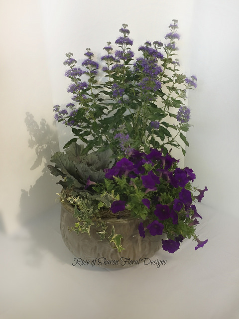 Medium Purple Mixed Planter