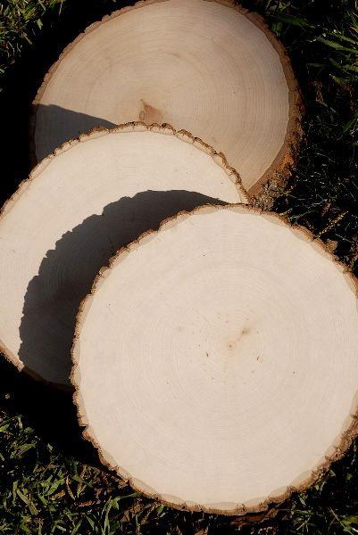 """9"""" to 12"""" wood round"""