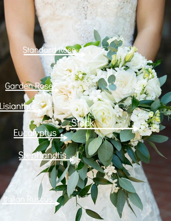 Green & White Bouquet label 2.jpg