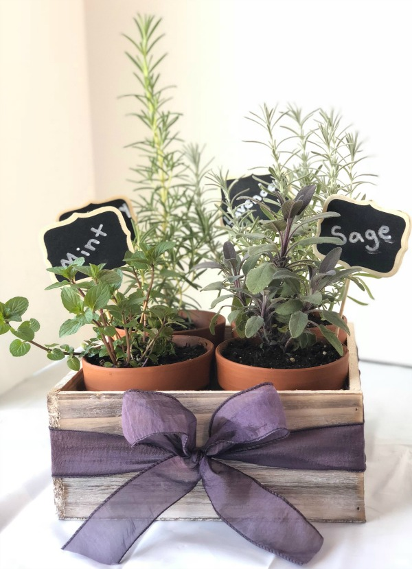 Sophie's Herb Box
