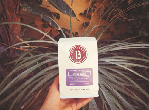 SHOP MEDIUM ROAST COFFEES