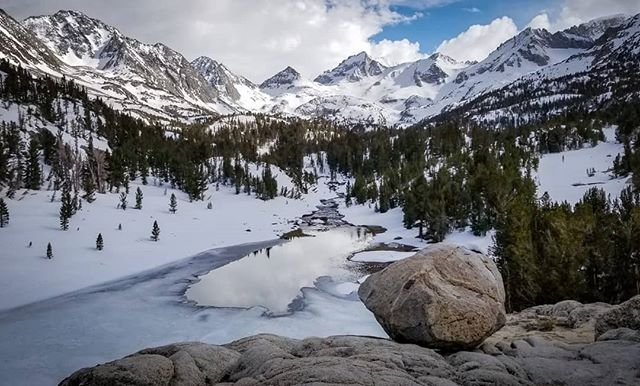 Early June in the Eastern Sierras Too good not to share....Drink Coffee. Stay Wild. Have an amazing Wednesday!