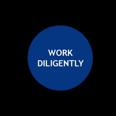 VALUES diligent (1).png