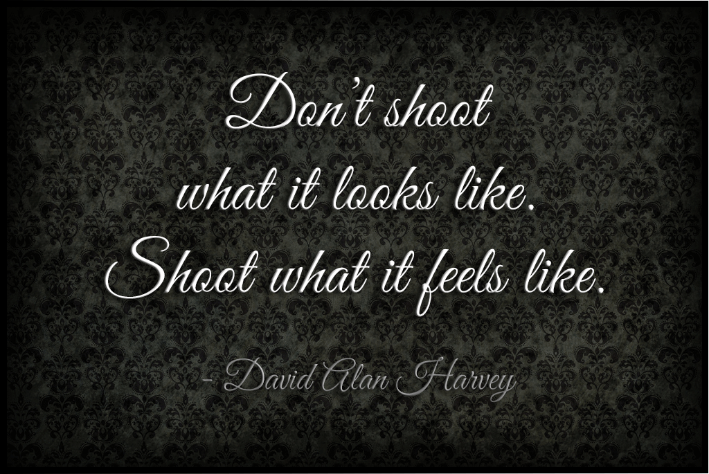TT_Photography_Quote_DavidHarvey.png