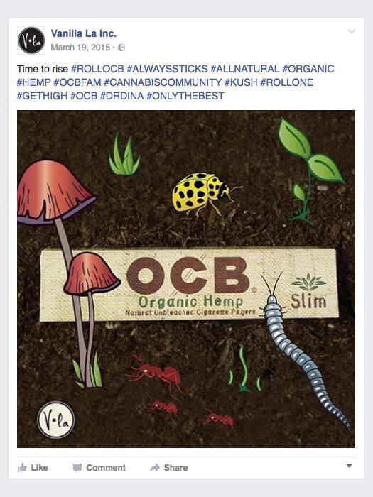 ocb-fb-4.jpg