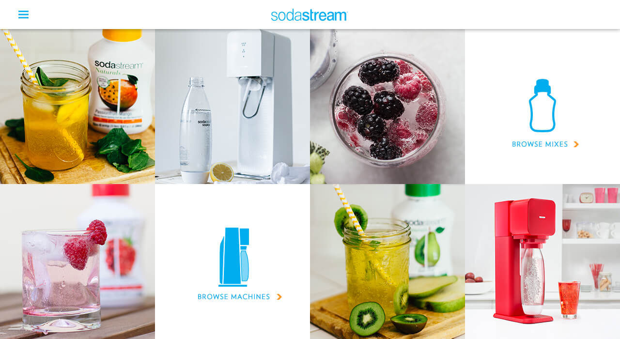 SS-minisite-homepage.jpg