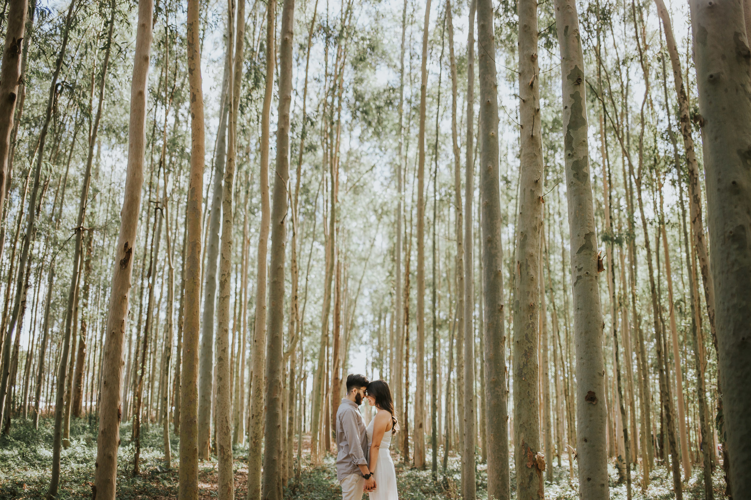 Aline&Guilherme-MARCELINOS-15.jpg