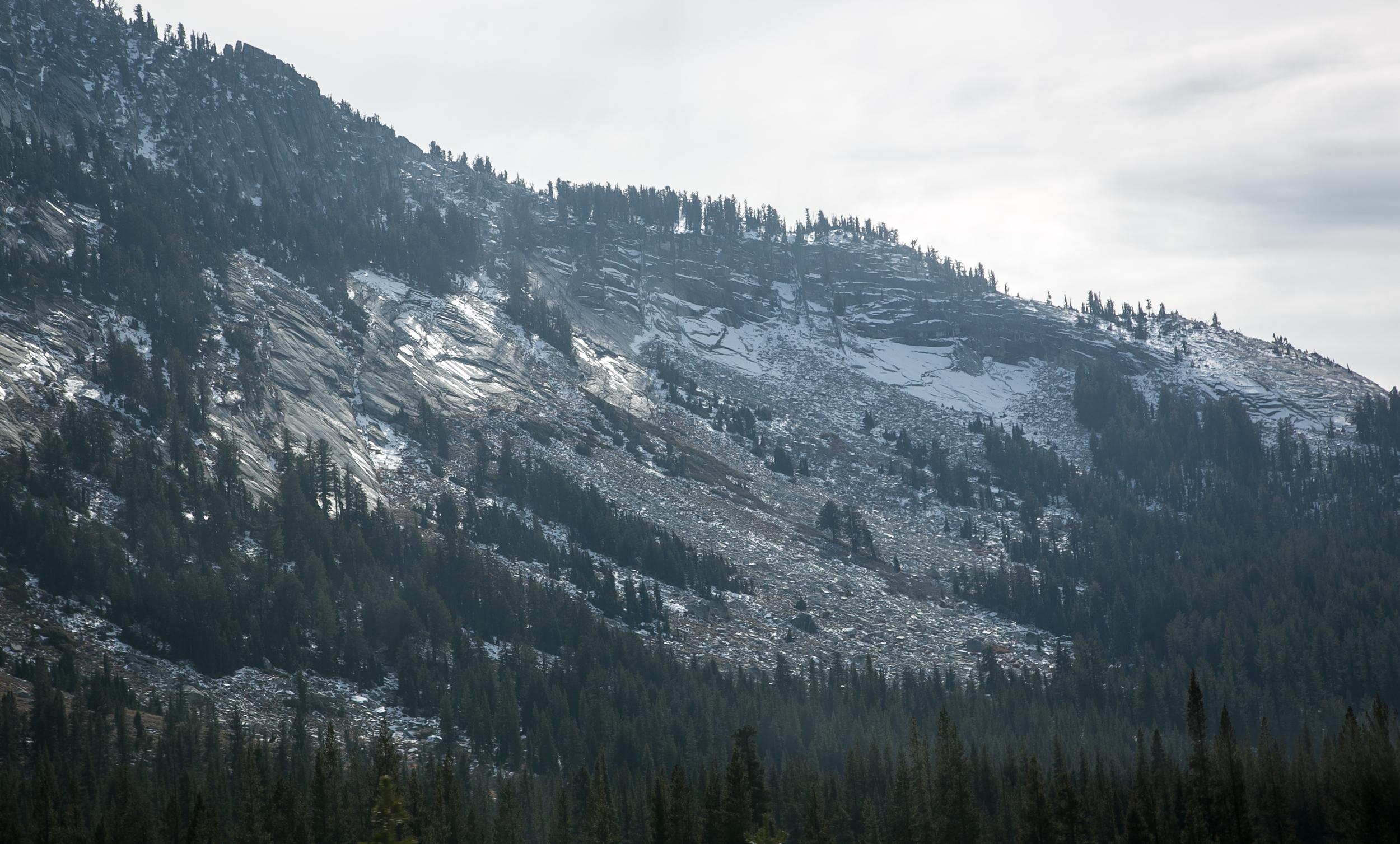 Tuolumne Meadows, Sierra Nevada. California.
