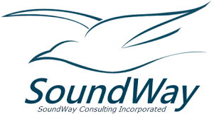 soundway consulting.png