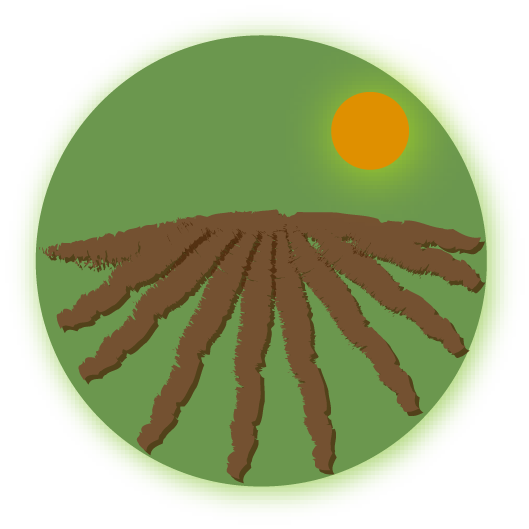 Sol, les terres, et leur utilisation