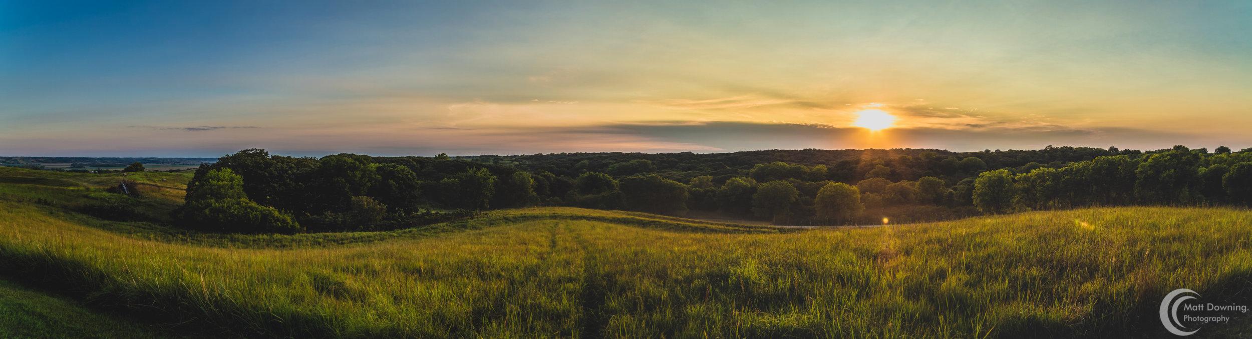 wheat pano 3.jpg