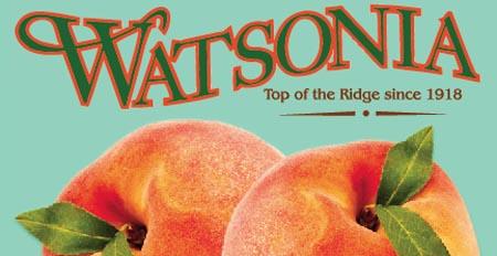 Watsonia Farms Logo.jpg