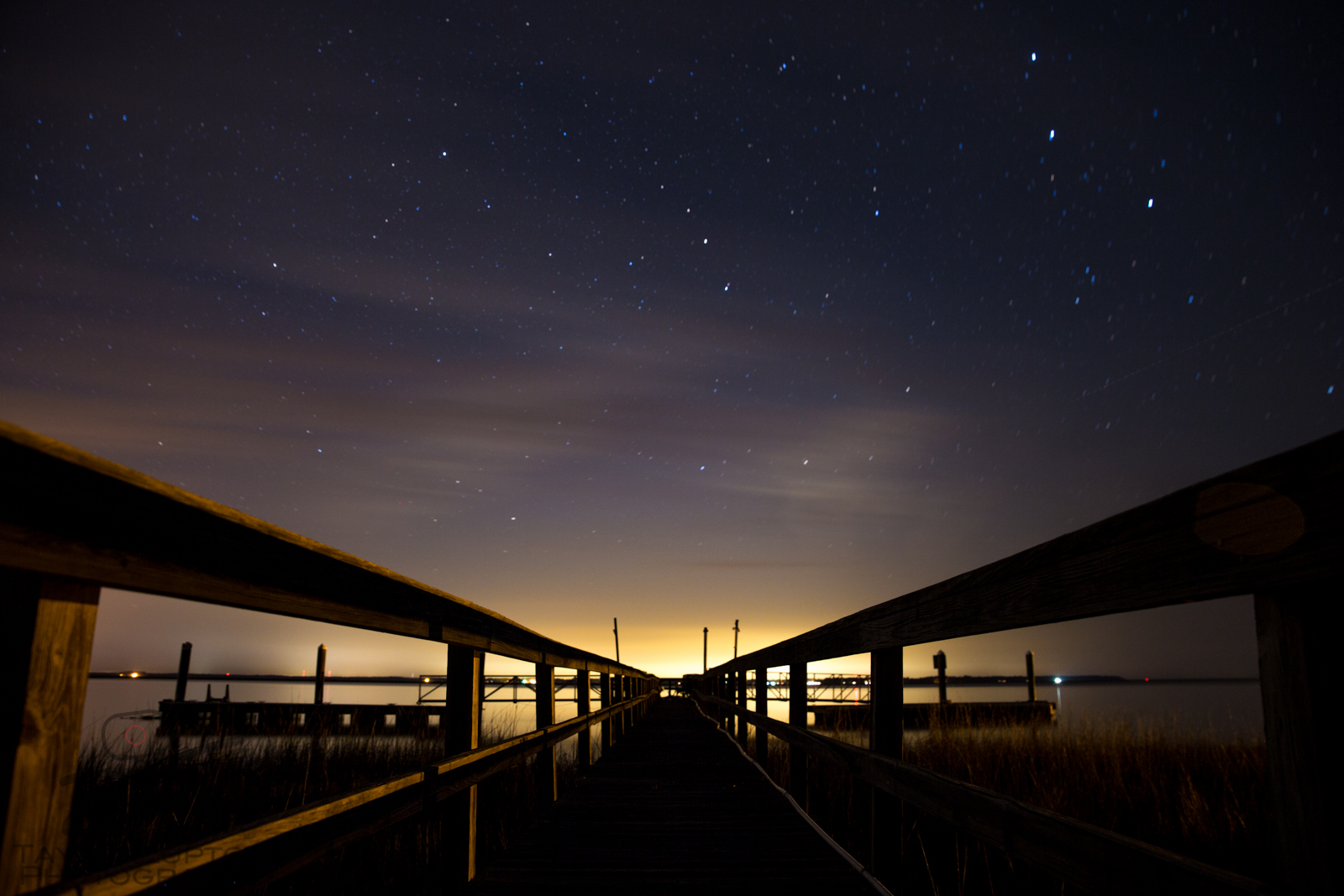 Stars Above the Boards