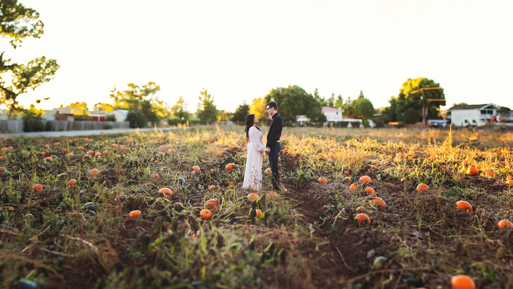 2014 | My Favorite Images | Liz Anne Photography 030.jpg