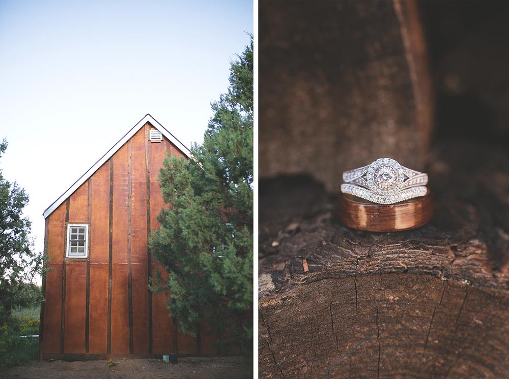 Daniel + Jaclynn | New Mexico Mountain Wedding | Liz Anne Photography 02.jpg