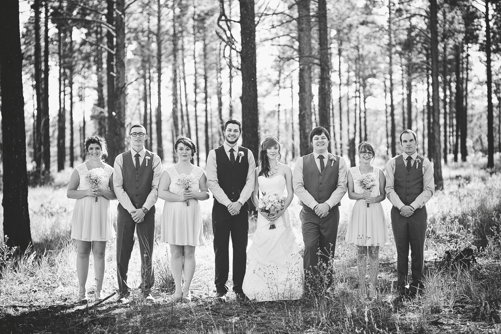 Daniel + Jaclynn | New Mexico Mountain Wedding | Liz Anne Photography 33.jpg