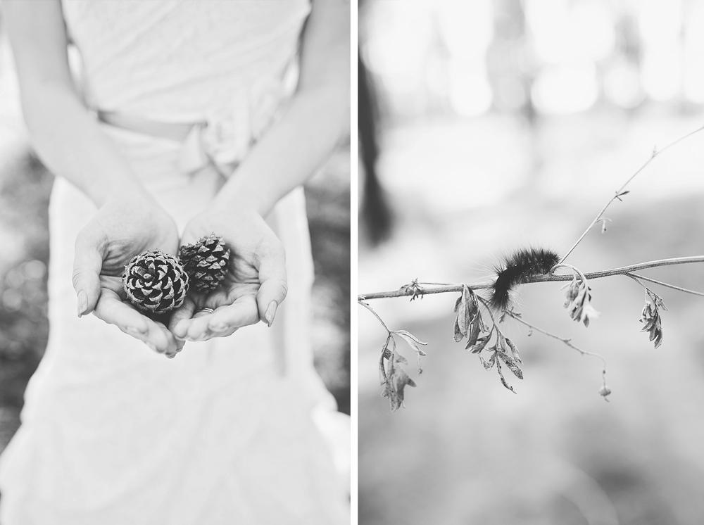 Daniel + Jaclynn | New Mexico Mountain Wedding | Liz Anne Photography 41.jpg