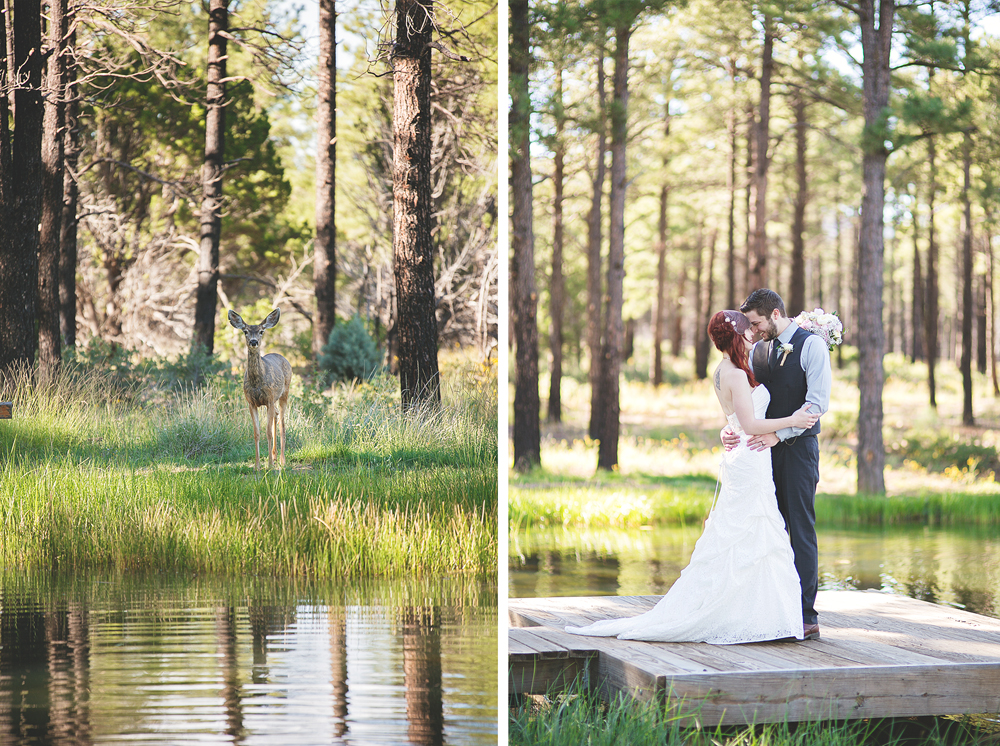 Daniel + Jaclynn | New Mexico Mountain Wedding | Liz Anne Photography 55.jpg