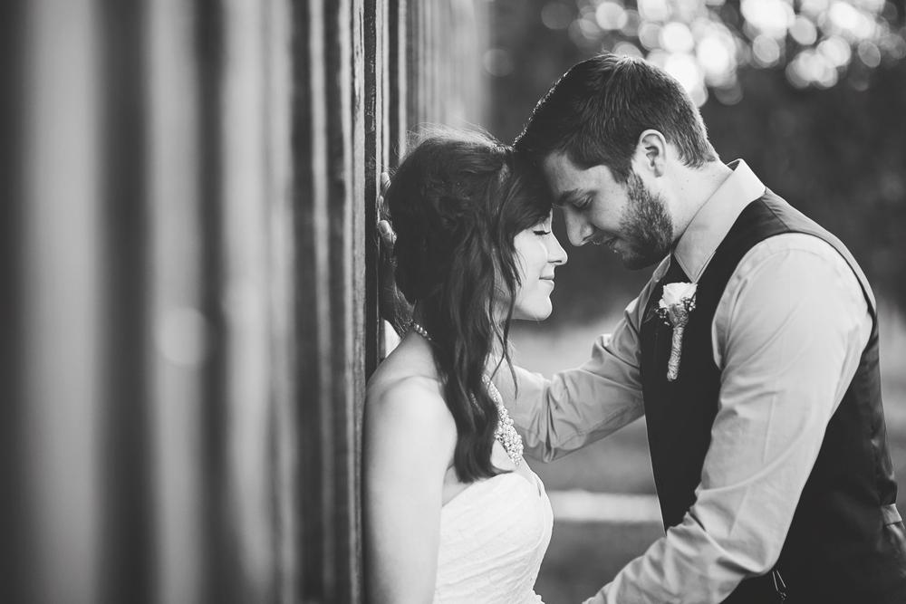 Daniel + Jaclynn | New Mexico Mountain Wedding | Liz Anne Photography 60.jpg