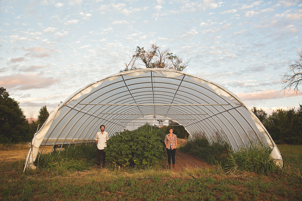 Kemper + Beth | Farm Engagement Session | Albuquerque, New Mexico | Liz Anne Photography 30.jpg