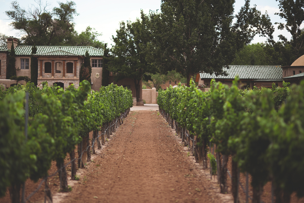 Casa Rondena Wedding | Albuquerque, NM | Liz Anne Photography 04.jpg