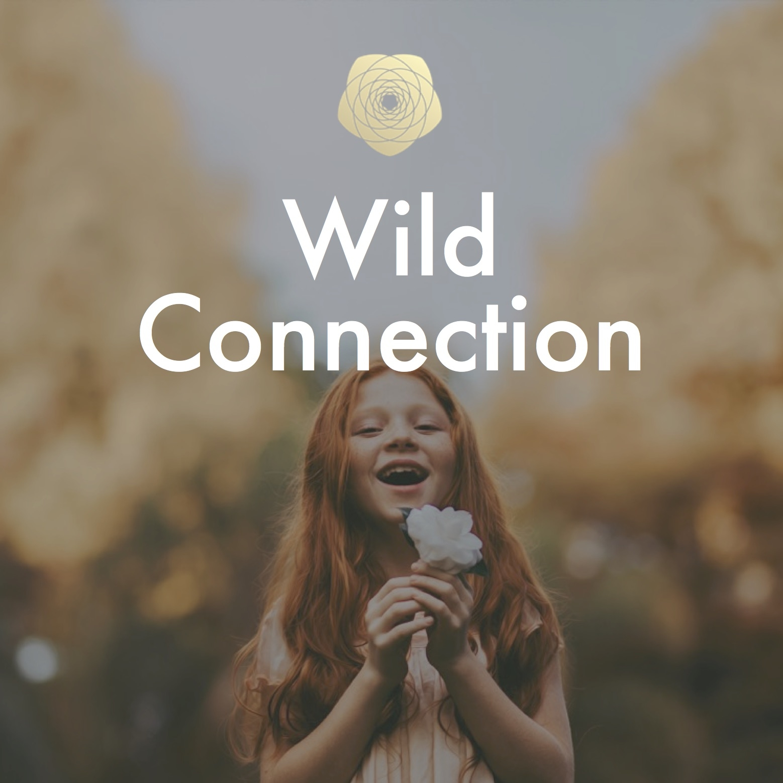 Wild Connection Button.jpg