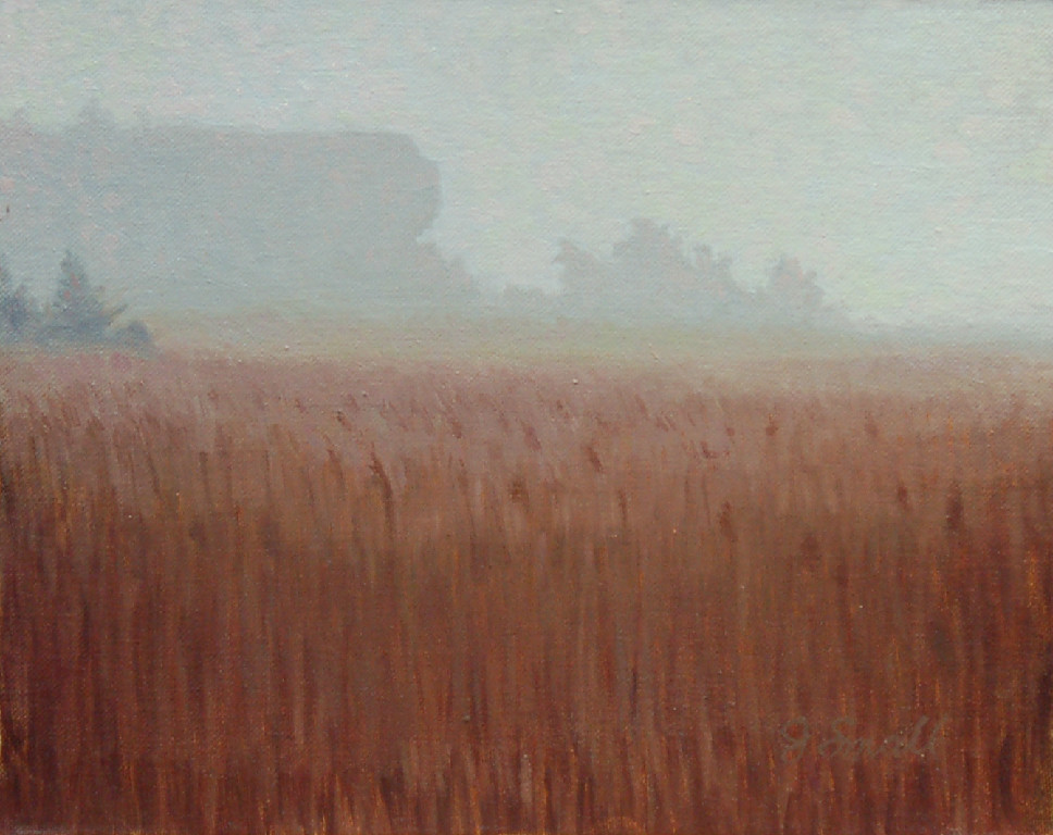 Jonathan Small, Foggy Morning - Hanging Rock