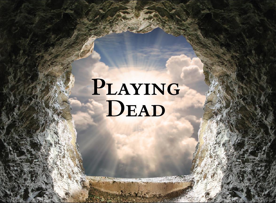 playing dead.jpg