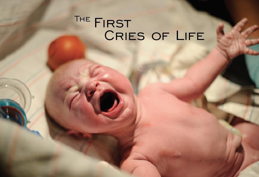 slide cries.jpg