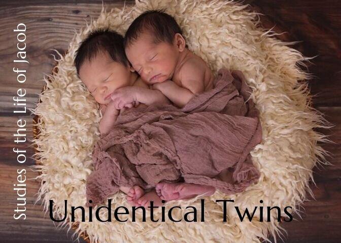 Unidentical Twins.jpg