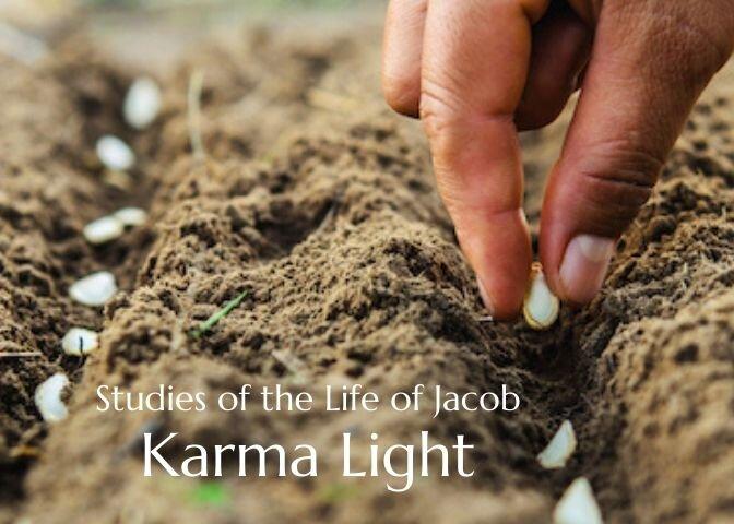 Karma Light 2.jpg