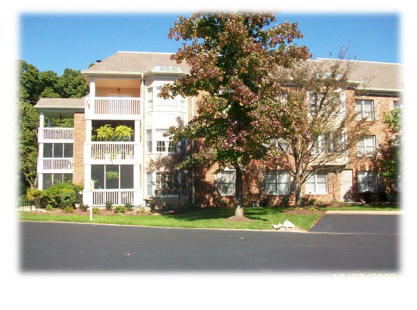 condominium repaint 4.jpg