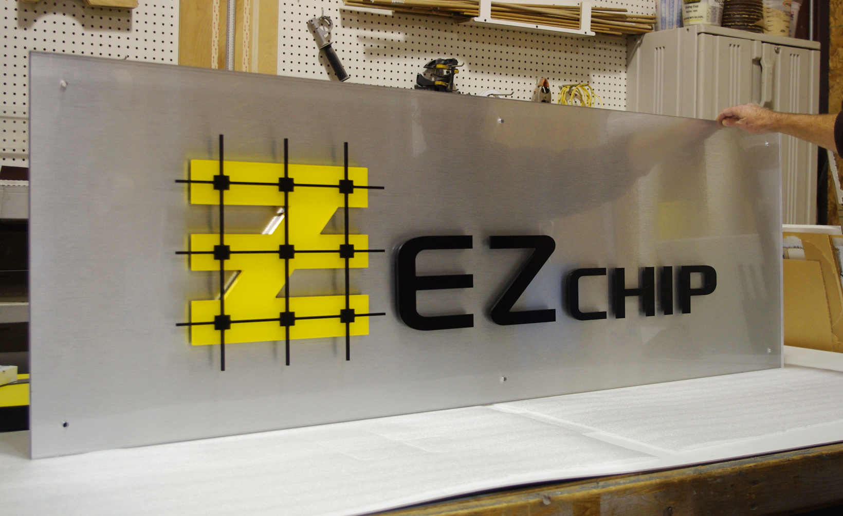 EZ Chip_2_WEBSITE.jpg
