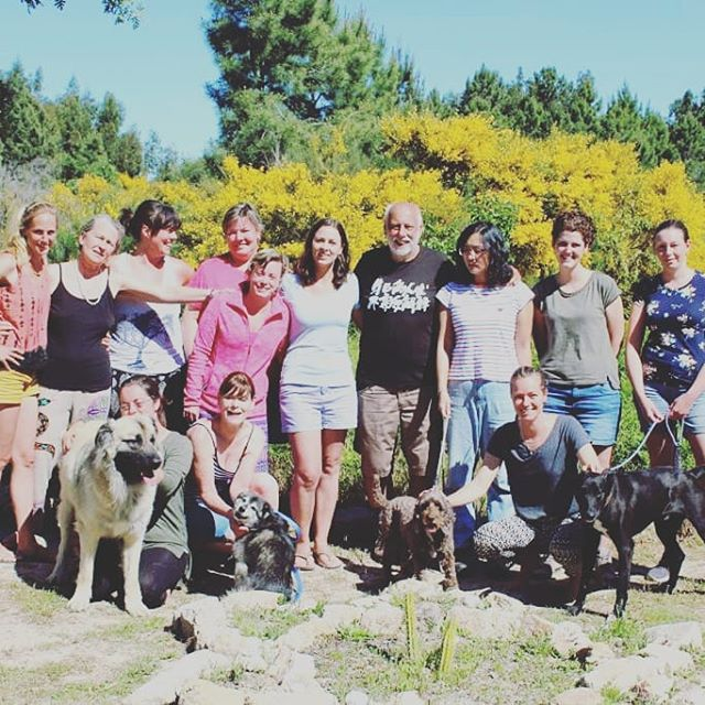 We had a blast hosting our first ever dog training course out in Portugal with the one and only John Rogerson! Many thanks to all involved! #dogtrainers #dogtrainingcourses #johnrogerson  #neverstoplearning #traindogs #estrelamountaindog #alaskankleekai #cockapoo #mixedbreeds #streetdog #UK #USA #Belgium #China #lovedogs