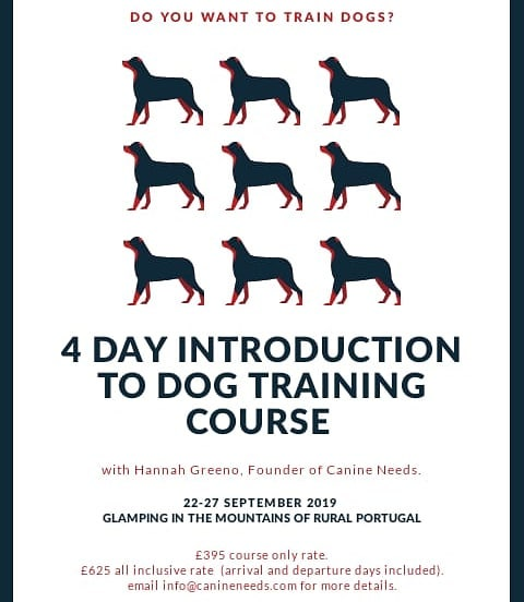 New course details announced for the Autumn season! #dogtrainers #trainthetrainer #trainingdogs #dogtraining