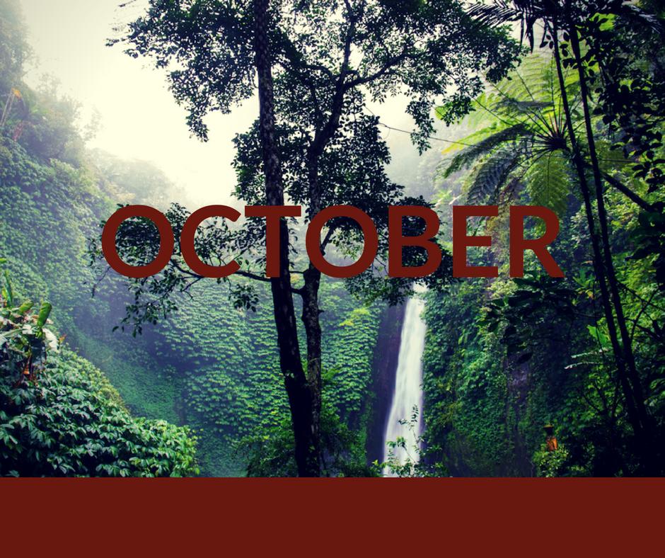 Angel Falls Release Date