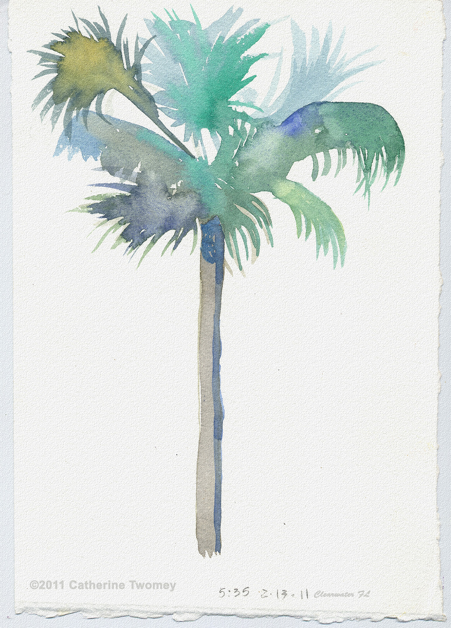 Florida Palm, A Hot Day by Twomey