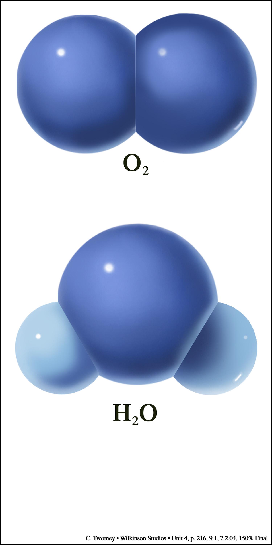 cellularmolecules1500.jpg