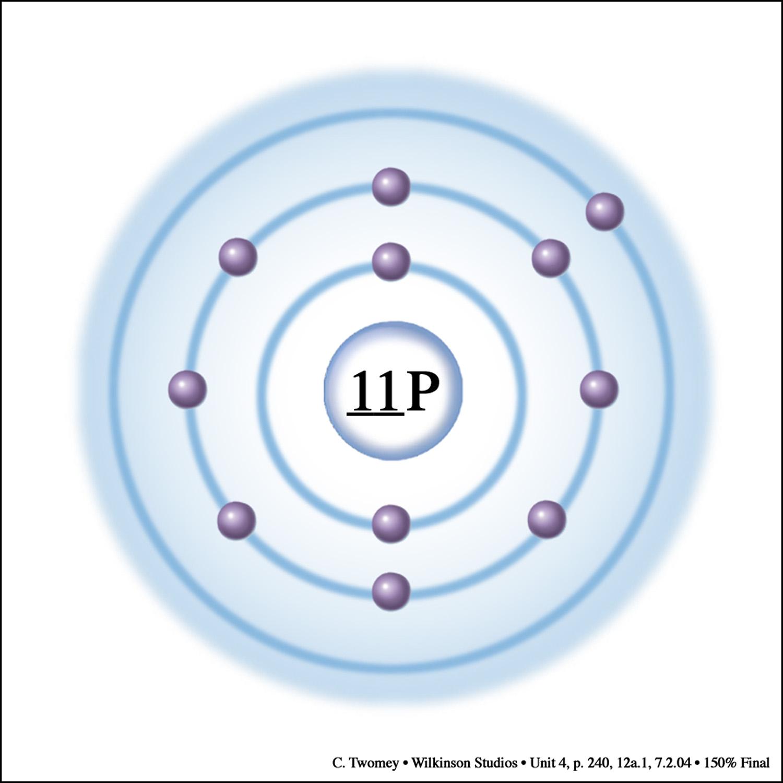 cellularsodiumpump1500.jpg