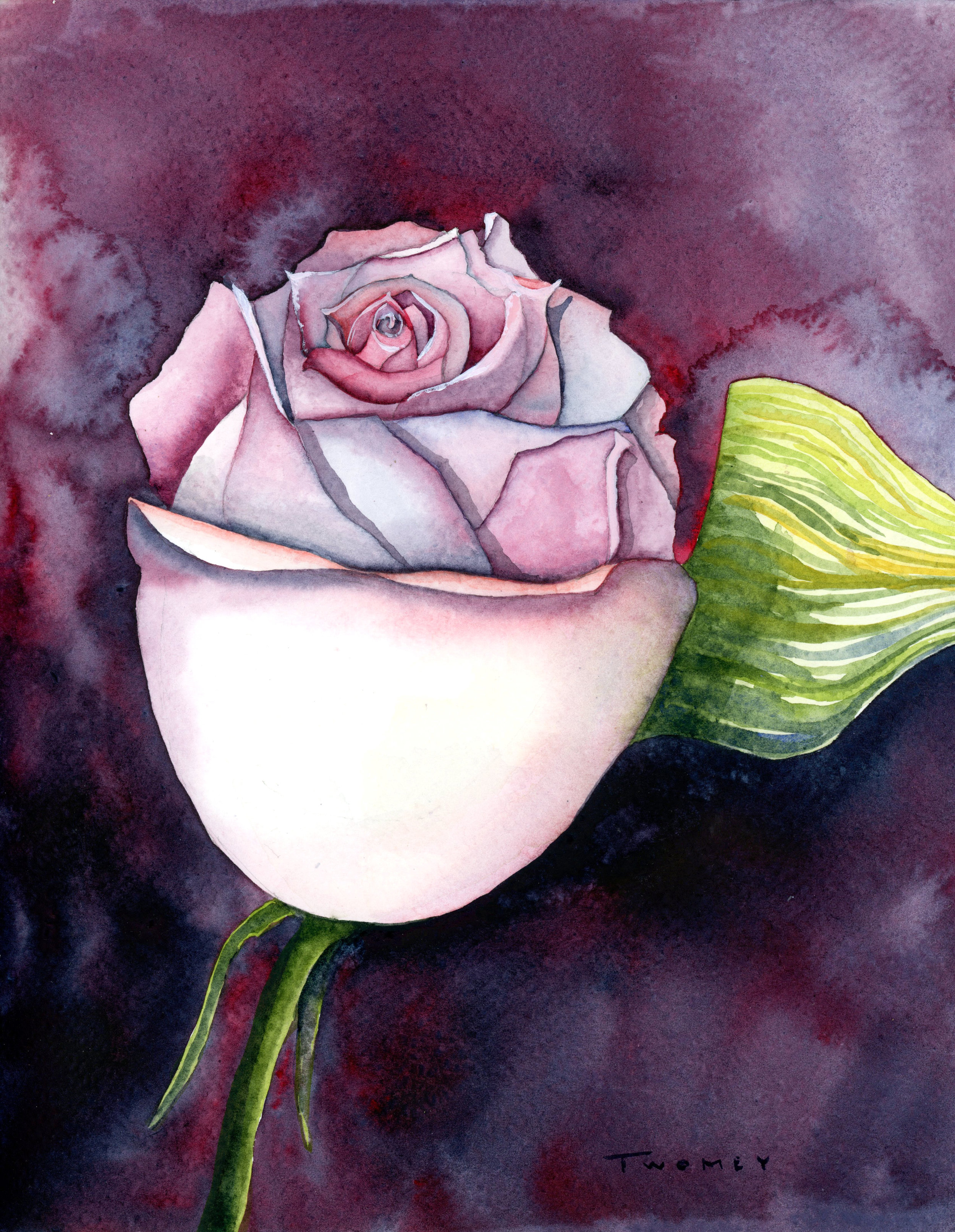 """Rose And Water"", watercolor, 11 X 9"""